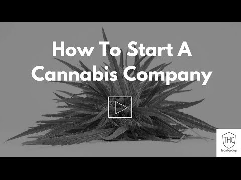 Should I Incorporate My Cannabis Business? Here's How to Tell