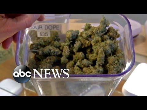 Daylight saving time, marijuana legalization among ballot initiatives
