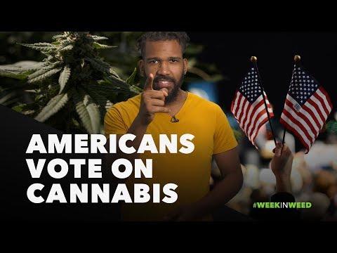 This Week in Weed: Americans Vote on Cannabis!