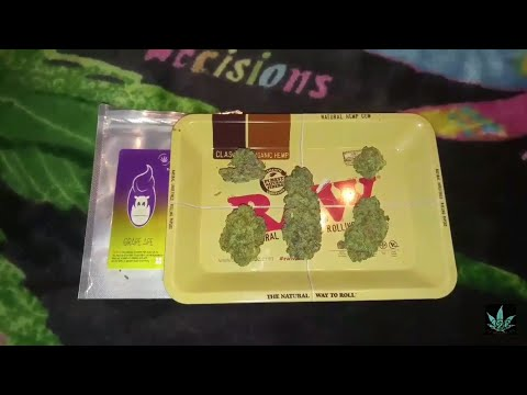 GRAPE APE – OFFICIAL CANNABIS STRAIN REVIEW LEAFLY (Mendocino Purps x Skunk x Afghani)