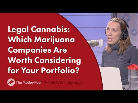 Cannabis Stocks: Which Marijuana Companies Are Worth Watching?