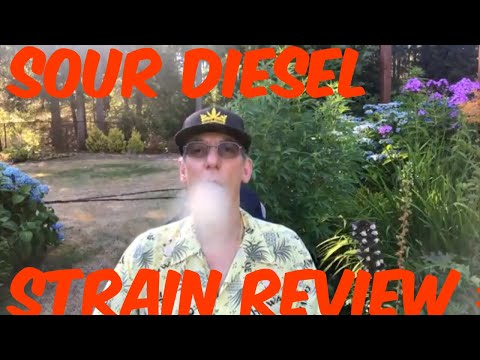 Sour Diesel Cannabis Marijuana Weed Strain Review