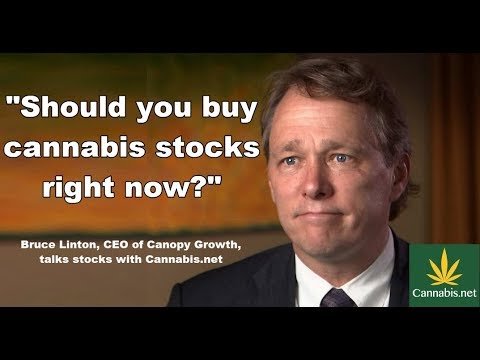 Should You Buy Cannabis Stocks Right Now, Bruce Linton, CEO of Canopy Growth?