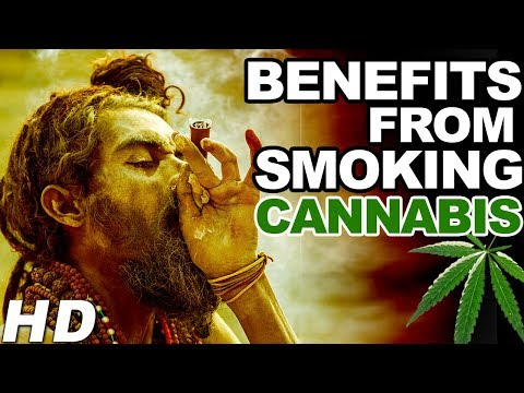 7 Really Surprising Health Benefits from Smoking Cannabis | Healthy Life Aim