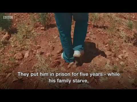 Lebanese farmer: Cannabis should be legal – BBC News