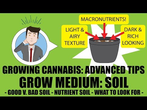 Grow Medium – SOIL (PART 1): Advanced Cannabis Growing Tips  – GROWING CANNABIS 201