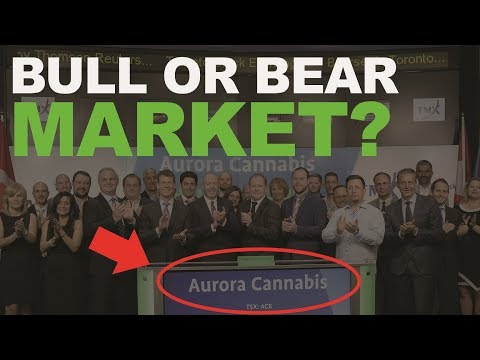 What really AFFECTS CANNABIS STOCKS? Stock MARKET RALLY, AURORA CANNABIS, CYBER MONDAY NEWS!