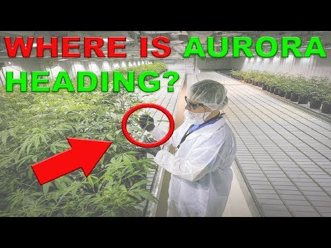 TRADE WAR vs. AURORA CANNABIS? Where are we heading in the week to come? CANNABIS STOCKS FIGHT!