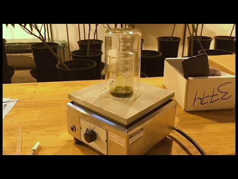 Make your own High Viscosity Cannabis Oil Vape Cartridges with Terpenes