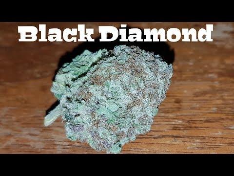 Canadian Cannabis Strain Review – Black Diamond