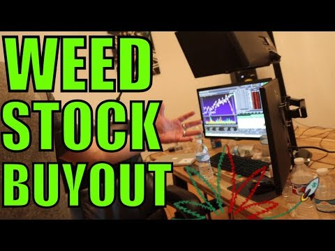 This Weed Stock Could Double This Week – Investing In Cannabis Stocks