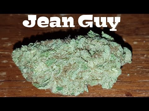 Canadian Cannabis Strain Review – Jean Guy by Tilray