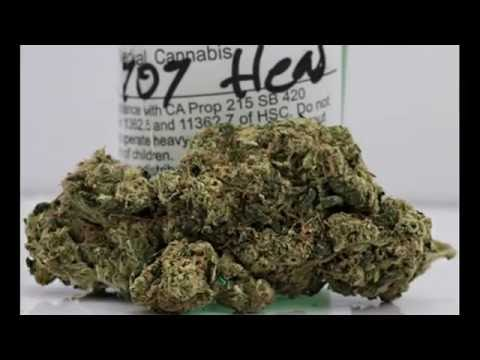 Top 10 Best Medical Marijuana Strains – Definitions And Photos