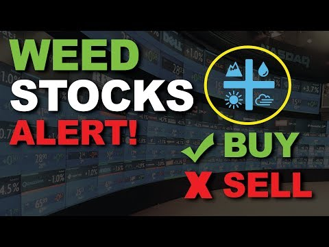 Will THIS cause a MASSIVE RALLY for CANNABIS STOCKS? POWELL DOVISH ON RATES, AURORA CANNABIS UP