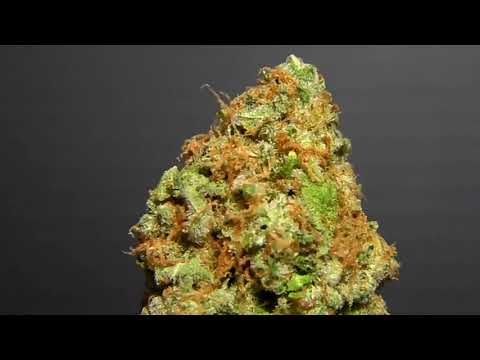 Pineapple Express Cannabis Review