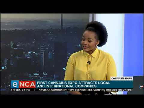 Cannabis expo showcasing