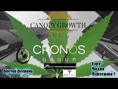 Marijuana Stocks EXPLODE! | Best Marijuana Stocks!