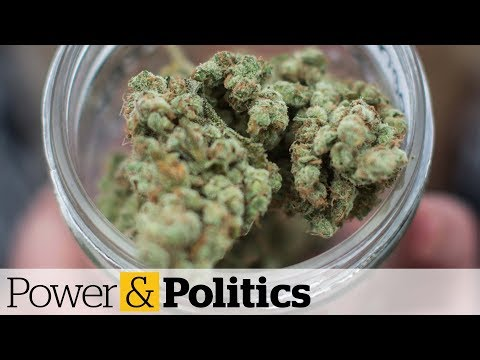 Only 25 cannabis store permits to be issued in Ontario for April | Power & Politics
