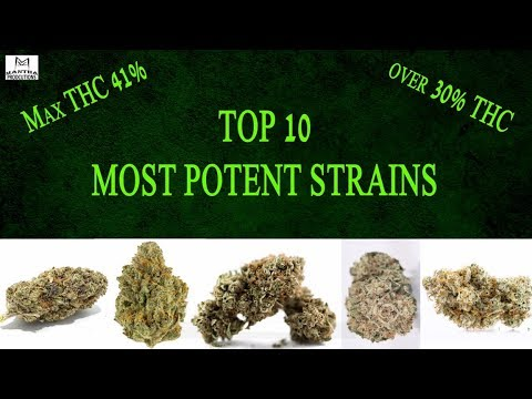 Top 10 Most Potent Strains 2018 (Watch until the end for the highest THC!)
