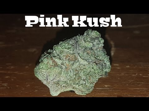 Canadian Cannabis Strain Review – Pink Kush By MedReleaf