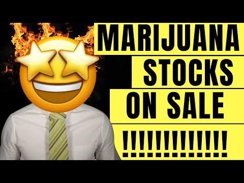 Marijuana Investment Opportunities (2019) – Cannabis Stocks on SALE!