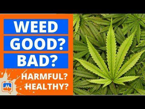 IS MARIJUANA GOOD OR BAD? Is Cannabis Healthy Or Harmful? Negative or Harmful Side Effects of Weed?