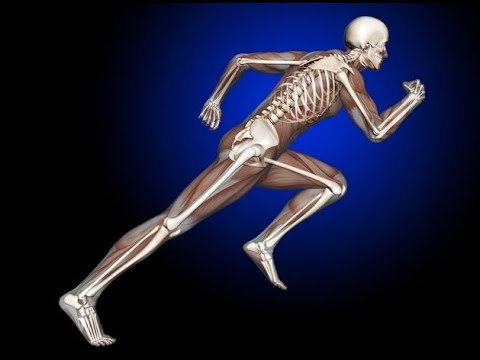 Health News – Scientist Reveal What Cannabis Does to Your Bones…