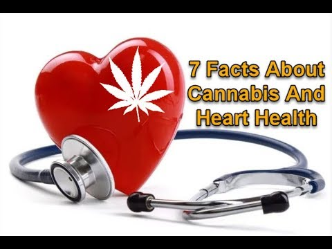 7 Facts About Cannabis And Heart Health
