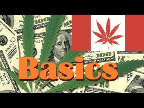 Canadian Marijuana Stocks 2017 & 2018 – Basics You Should Know (For Beginners)