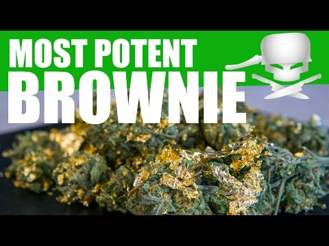 Most Potent Brownie – Epic Meal Time