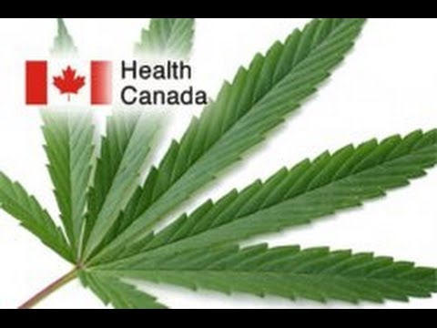 Health Canada Cannabis Regulations Announcement