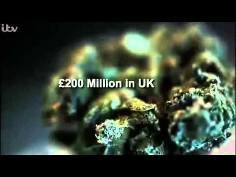Cannabis Business in The UK Documentary