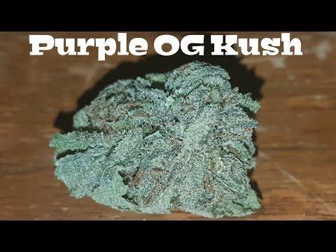 Canadian Cannabis Strain Review – Purple OG Kush