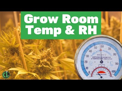 Grow Room Humidity (RH) and Temperature For an Indoor Cannabis Plants