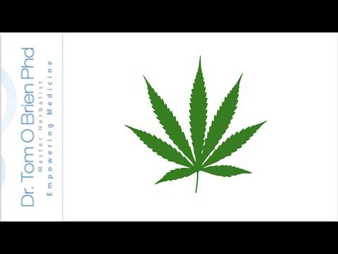 10 Health Benefits of Cannabis | Herbal Medicine