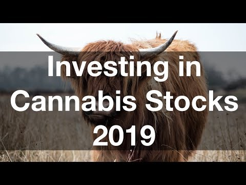 Marijuana Stock Investing 2019 | Bullish on Cannabis Stock Growth