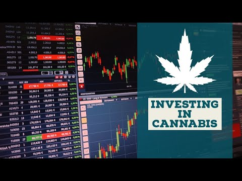 Investing in Cannabis: What You Need to Know About Marijuana Stocks