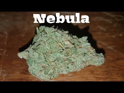 Canadian Cannabis Strain Review – Nebula