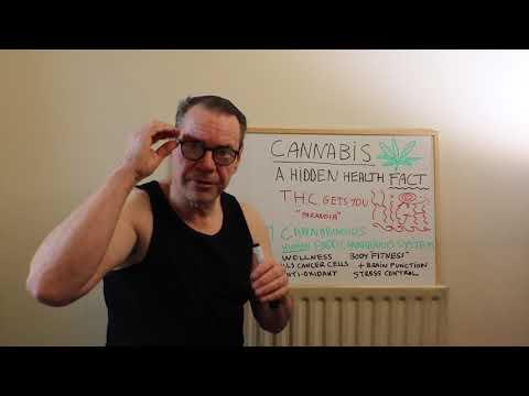 The hidden health-fact of cannabis !