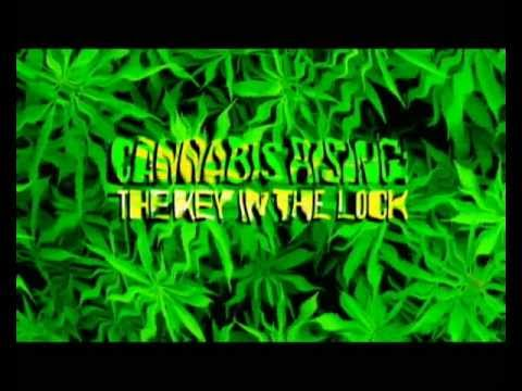 Cannabis Rising: The Key In The Lock. Your Health Your Future