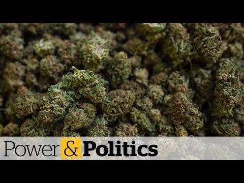 Ontario's cannabis retail license lottery