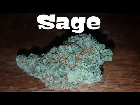 Canadian Cannabis Strain Review – Sage