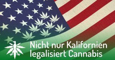 USA: Nicht nur Kalifornien legalisiert Cannabis | DHV News #100