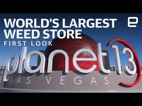 Inside the World's Largest Marijuana Dispensary at CES 2019