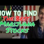 Top Marijuana Stocks: How To Find & Trade in 2019 ✳️