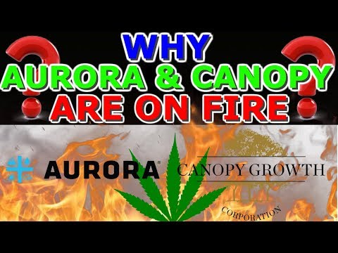 Why Aurora Cannabis And Canopy Growth Are On Fire Today ! 🔥Marijuana Stocks On Fire ACB-CGC 2019