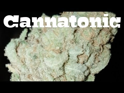 Canadian Cannabis Strain Review – Cannatonic