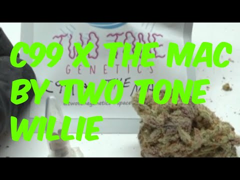 C99 x The MAC Cannabis Marijuana Weed Strain Review from Two Tone Willie