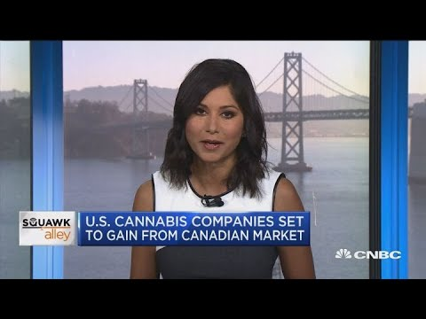 US cannabis companies set to gain from Canadian market