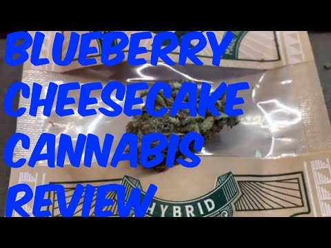 Blueberry Shortcake Cannabis Marijuana Weed Strain Review
